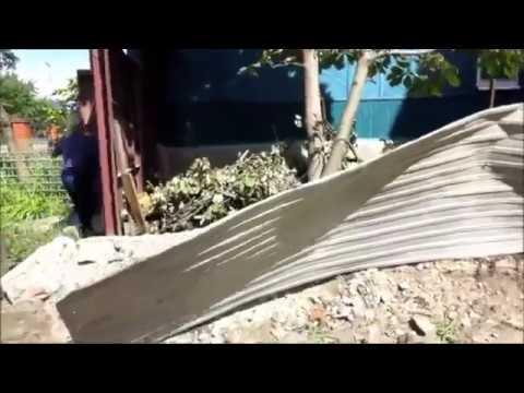 Сначала выломала забор, а потом пошла калитку на ключ закрыла