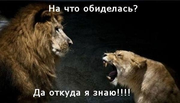 ЮморныеФОТО