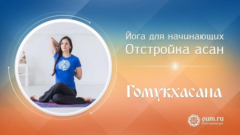 Йога для начинающих отстройка асан (гомукхасана)