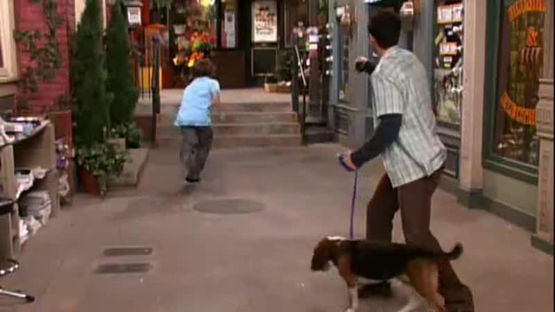 Magicienii Din Waverly Place Episodul 08 - Tineti Dragonul In Frau