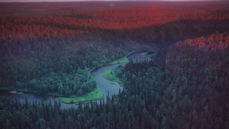 Финляндия. Путешествие в настоящую дикую природу.
