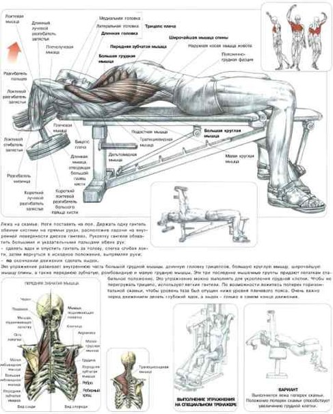 Упражнения на грудные в домашних условиях 171