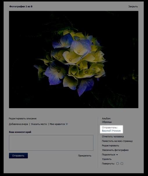 Если загружать фото из альбомов со страницы, отправителем указывается хозяин страницы.