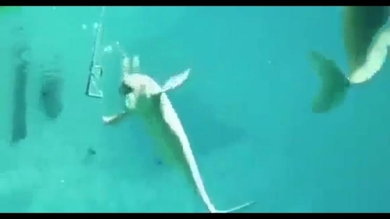 Вэйперы они под водой вэйперы
