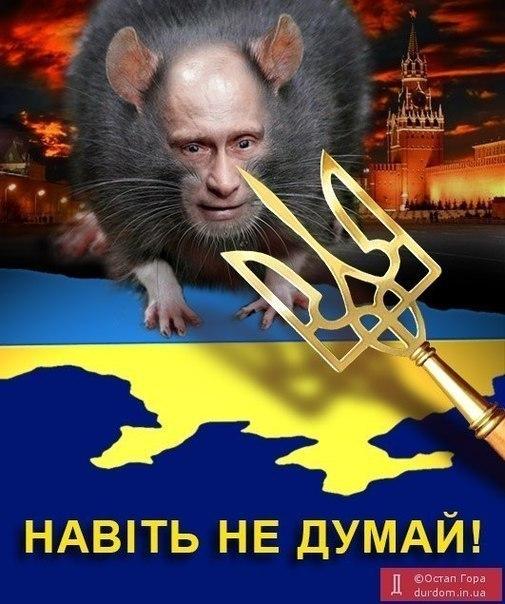 Террористы угрожают сжечь избирательный участок в Донецке, - СМИ - Цензор.НЕТ 2540