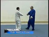 (Throw Techniques) 王战军 陈式太极拳实战技击之摔法