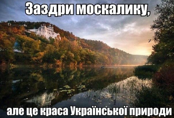 Следствие установило виновных в расстреле более 70 человек из Небесной сотни, - Луценко - Цензор.НЕТ 8946