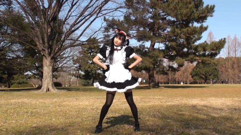 【メイド】ネコネコ☆スーパーフィーバーナイト踊ってみた【やよい】 sm30536995