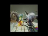 SEBASTIAN INGROSSO - DARK RIVER (LYRIC VIDEO)