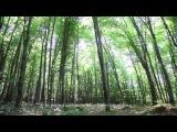 «Открытая могила» (2013): О съёмках / Официальная страница http://vk.com/kinopoisk