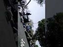В Иране теракт. Боевики открыли огонь по толпе во время военного парада