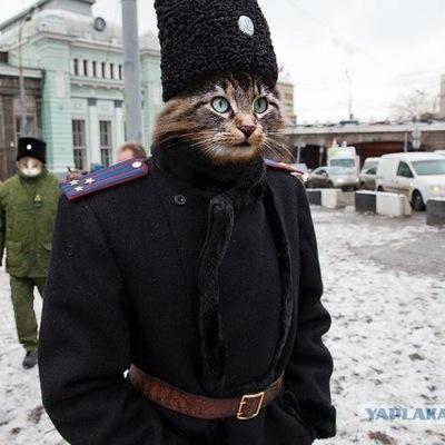 Екатерина Певзнер, 23 февраля 1976, Москва, id128730276