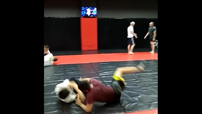 MMA борьба сибирия