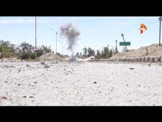 Саперы РФ обезвредили более 120 взрывных устройств в Пальмире