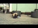 TOOM - BALALAIKA. This is Russia. Russian music. Folk. Балалайка. Супер шоу на балалайке. Виртуозы Москвы. Эксклюзив. Super star. The Beatles. Justin Bieber. ABBA. Le clochard. Паганини. Просто супер, полный улёт, жесть, ржач, ржачь, ржака, прикол, экстра