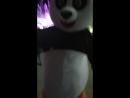 Панды тоже лезгинку пляшут 😅 Кисловодск