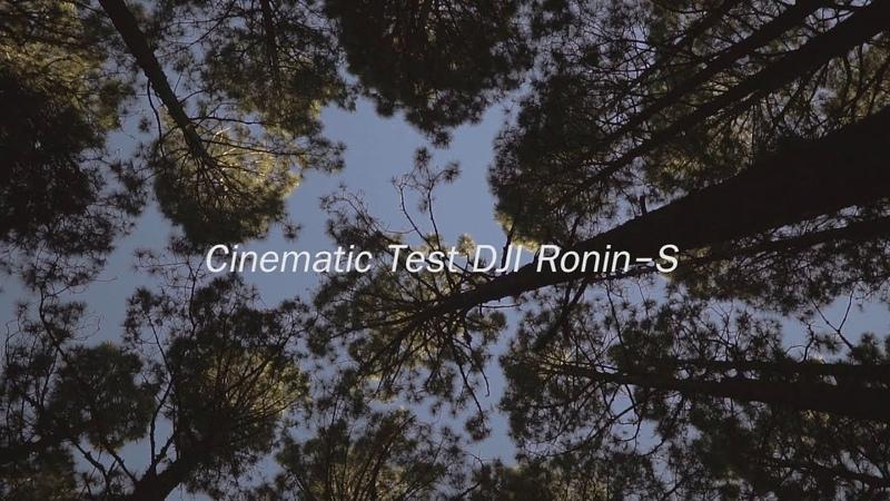 Cinematic Test DJI Ronin S | Sony a7III