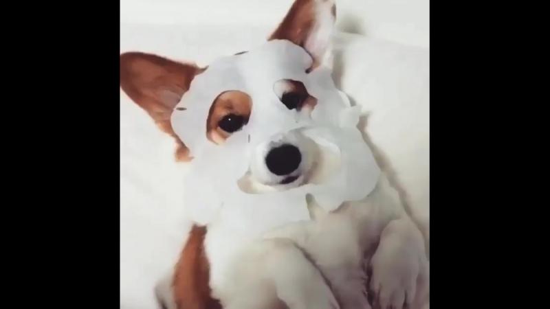 Купи 4 тканевые маски EyeNlip пятая в подарок