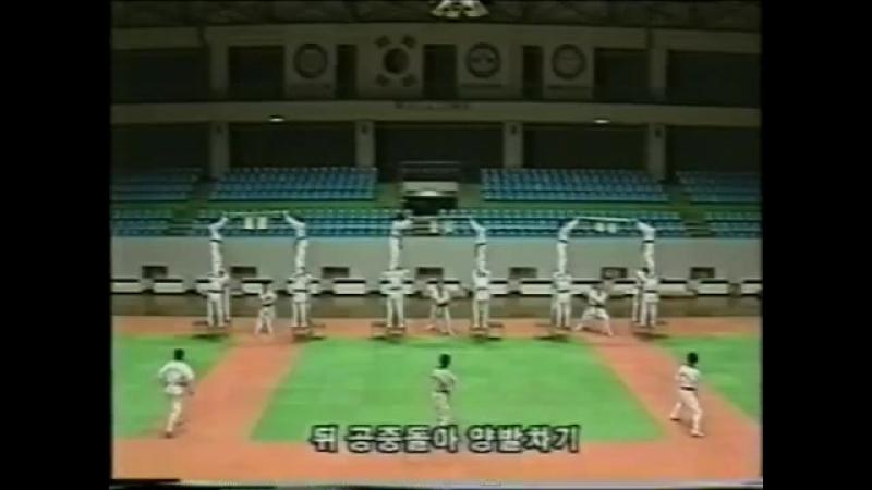 Тхэквондо ВТФ Обучение технике ударов ногами для выступления на показательных выступлени 1