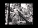 """Алеся - ВИА Сябры. Кадры из фильма """"Колдунья"""" 1956 (La Sorcière)"""