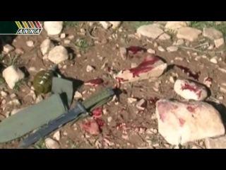 Война в Сирии. Последние новости за 04.02.2013