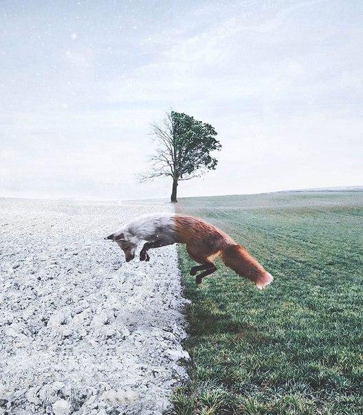 10 фотографий Рональда Онга, которые круче любого сновидения.