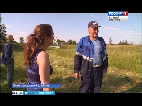 ГТРК СЛАВИЯ Травяной пожар в Борках 17 07 18