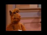 Alf Quote Season 2 Episode 3 Всегда жую