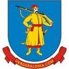 Украинская Геральдика: гербы и флаги в векторе