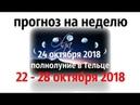 ПРОГНОЗ на НЕДЕЛЮ 22 28 октября 2018 ПОЛНОЛУНИЕ в Тельце прогноз от Olga