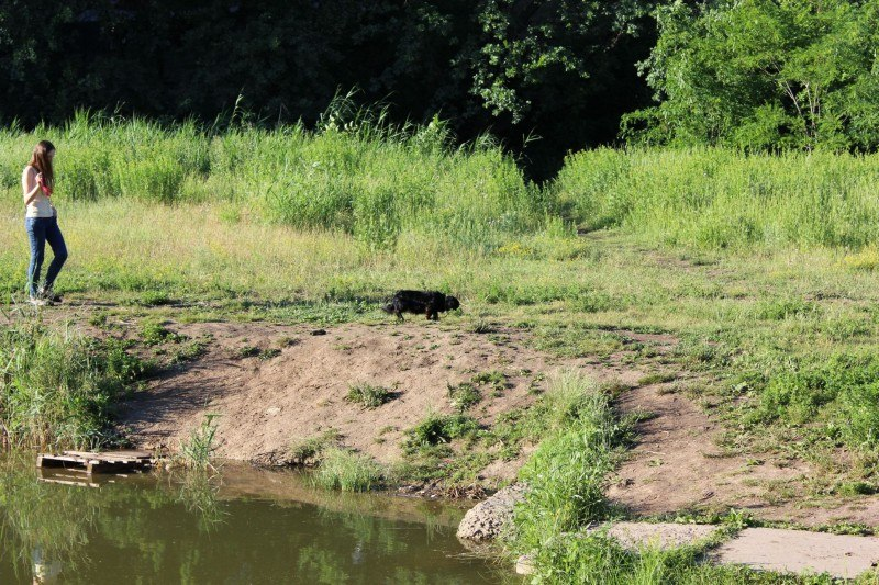 Наши читатели побывали на небольшом озерце в «Дубках» северного района Таганрога
