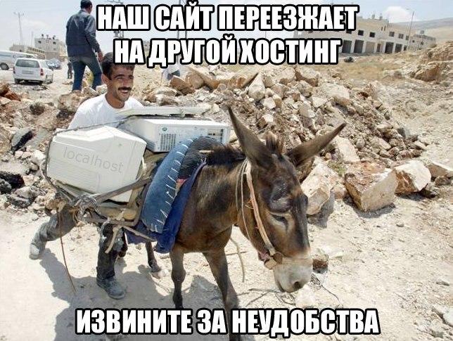 https://pp.vk.me/c635100/v635100427/869a/C6oTjtN8YgM.jpg