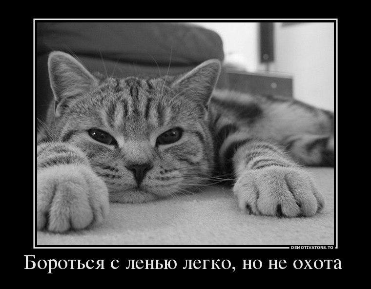 Новогодние шрифты для русского языка скачать бесплатно произошло почти