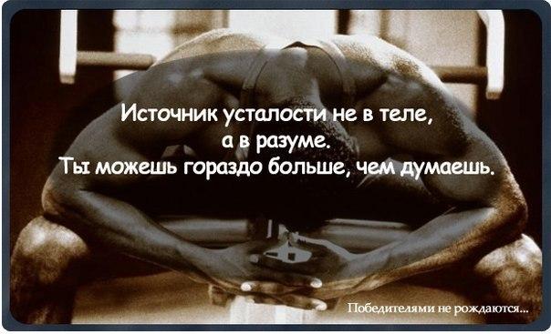 http://cs405429.vk.me/v405429485/9257/B01LFGksqCE.jpg