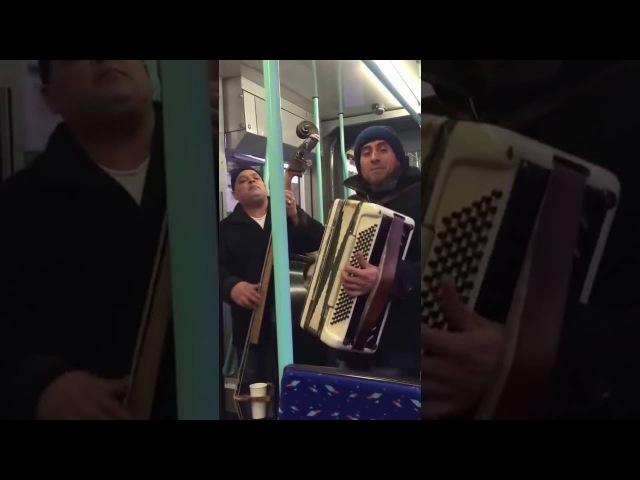 Цыгане красиво поют в Швейцарии в трамвае