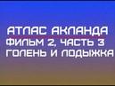 Фильм 2, Часть 3 Голень и лодыжка Атлас Акланда