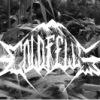Coldfells (Dark Ambient / Ritual Ambient)