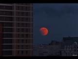 Затмение кровавой луны над Омском (рестрим)