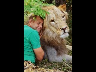 Белый лев Дейл стал участвовать в фото-сессиях ! Тайган