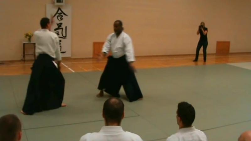 Donovan Waite 7th dan Aikikai Shihan in Sopron Taijutsu