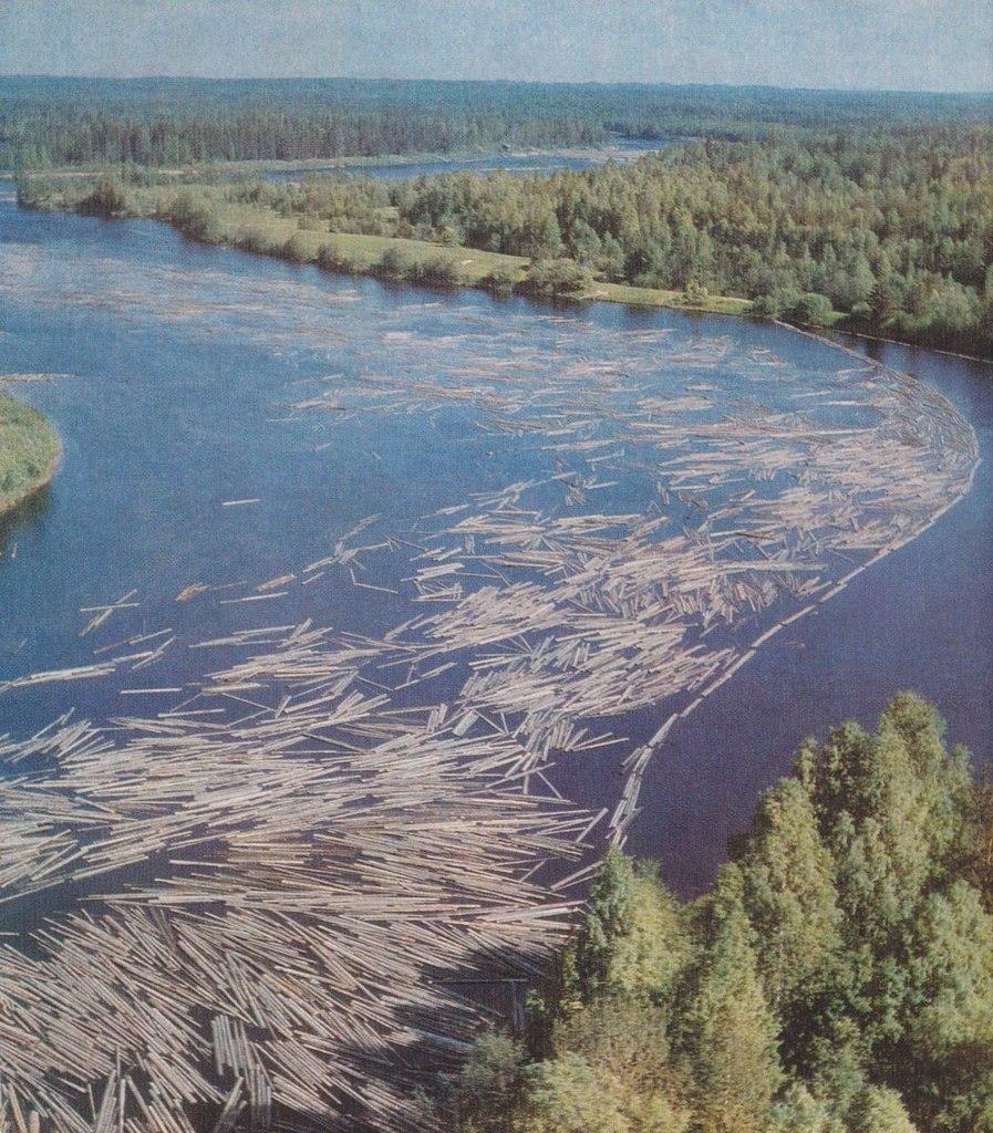 Река Водла - река труженица