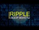 Криптовалюта Рипл [Ripple XRP] обзор 2018, перспективы.
