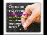 Разрешите Духу Святому повести Вас в восходящую молитву за близких