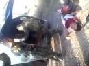 18+ 21+ Сирия: Отряды Хизбирана добивают раненных пленных и гражданских