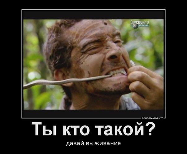 http://cs406829.userapi.com/v406829981/2705/jw-HmVmIr2Y.jpg