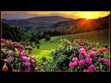 Relaxing Jazz Music Lazy Day Easy Listening Relaxing Music