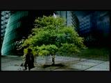 William Orbit - Barber's Adagio For Strings (1999)