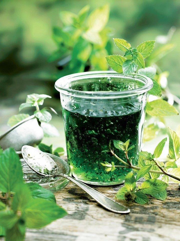 Варенье из мяты Сохрани себе Ингредиенты: Листья мяты
