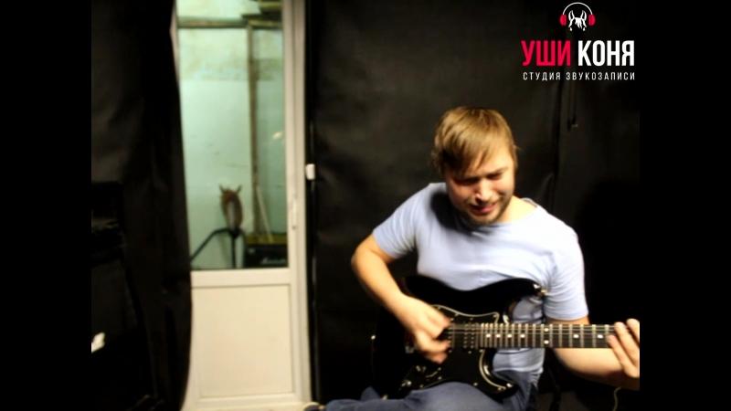 Уши Коня - Обзор гитарки Fernandes Function Strat