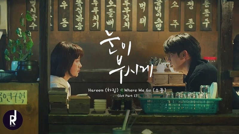 [MV] 하림 (Hareem) - Where We Go (소풍) | The Light In Your Eyes (눈이부시게) OST PART 2